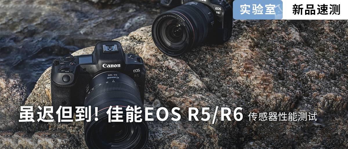 R5 R6传感器测试