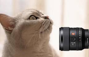 轻巧与强劲是否能集于一身?索尼 FE 35mm F1.4 GM镜头评测